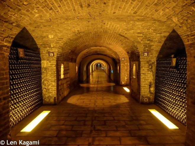 Moët & Chandon Wine Cellar