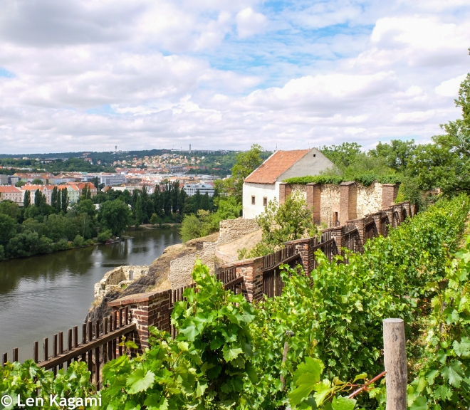View from the Vyšehrad Fortress