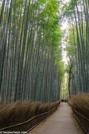 Arashiyama (1)