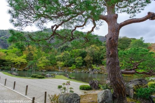 The garden of Tenryū-ji