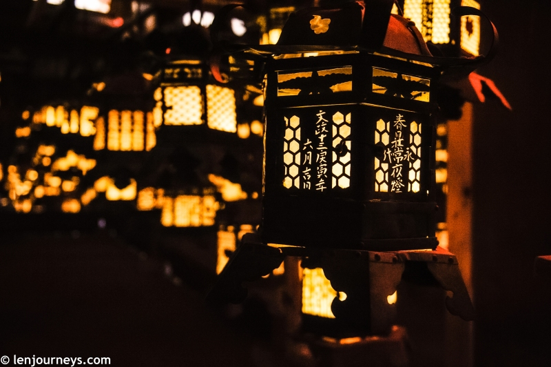 The lanterns of Kasuga Taisha