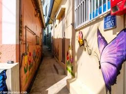 The Butterflies Alley