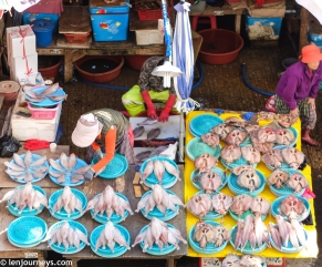 Ajumma & her fishes